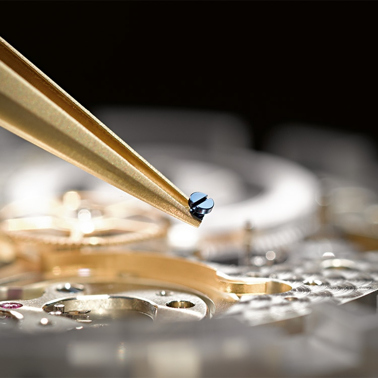 Assembly of a blued screw in an A. Lange & Söhne manufacture calibre